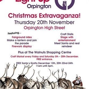 Light Up Orpington